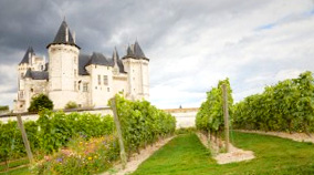 Wine-tasting and chateau tours with Hexagon Tours.